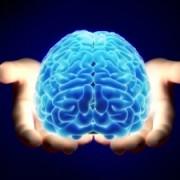 Les ondes émises par le cerveau