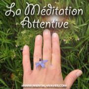 La Méditation attentive ou Vipassana