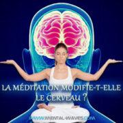 La méditation modifie-t-elle notre cerveau ?