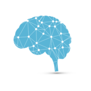 Devriez-vous croire ceux qui proposent d'entraîner votre cerveau pour réussir dans la vie ?