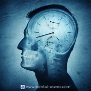 Chronobiologie, horloge et rythmes circadiens
